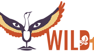 Wild 11 World Wilderness Conference