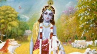Krishna in Braj
