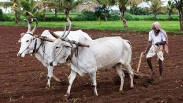 Prana, Desha, Anna: The Origins Of Spiritual Agriculture Part I