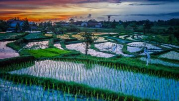 Prana, Desha, Anna Part II: The Modes Of Spiritual Agriculture